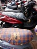 Parkering av sparkcykeln royaltyfria bilder
