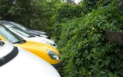 Parkering i gräsplanen Arkivbilder
