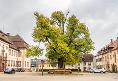Parkeringsplatser av abbotskloster av St Peter av Schwarzwald Royaltyfri Bild