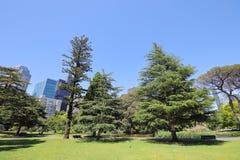 Parkgarten Melbourne Australien lizenzfreie stockfotos