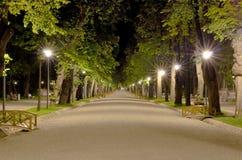 Parkgränd Fotografering för Bildbyråer