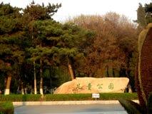 Parki i lasy obraz royalty free