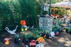 Parki i Ogrodowa ekspozycja w Argentyna zdjęcie royalty free