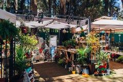 Parki i Ogrodowa ekspozycja w Argentyna zdjęcie stock