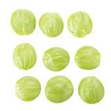 Parkia speciosa seeds or bitter bean on white background Stock Photos