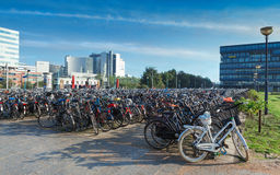 Parking of bicycles in Amsterdam Royalty Free Stock Photo