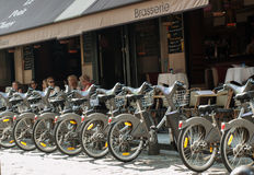 Parking of bicycles for rent Stock Images