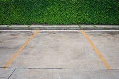 Parking concret de l'espace vide et ligne jaune avec le buisson vert à l'arrière-plan Image stock