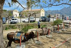 Parking in the Corsican village Pigna Stock Photo