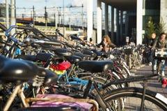 Parking dla bicykli/lów Zdjęcie Stock