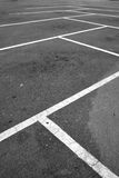 Parking hold separated by white lines. Royalty Free Stock Image