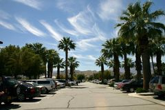 Parking lot. Sunny parking lot surrounded by palm trees Royalty Free Stock Images