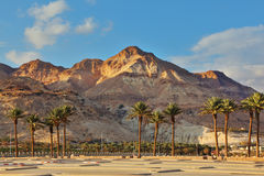 An parking lot at the Dead Sea Royalty Free Stock Image