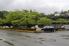 Parking lot by the road in rain Royalty Free Stock Photography