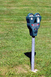 Parking meter. With grass on the background Royalty Free Stock Images