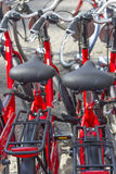 Parking of the new red bicycles in Amsterdam, Europe Stock Photography