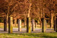 Parking in a park Royalty Free Stock Photos