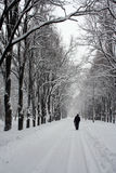 Parking path in winter. Parking path in winter,afield walk the people,goes the snow Stock Image