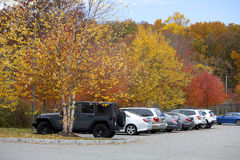 Parking place. Parking of cars surrounded by beautiful autumnal trees Royalty Free Stock Photography