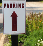 Parking sign. With flower garden background stock images