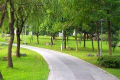 Parkkorridor Arkivbild