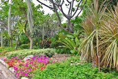Parkland сада Стоковое Изображение