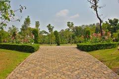 Parkland сада Стоковое Изображение RF