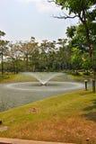 Parkland сада Стоковые Фото