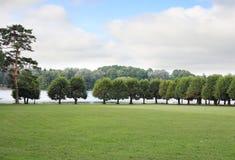 parkland Royaltyfri Fotografi
