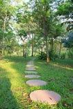 Parkland del jardín Foto de archivo