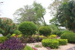 Parkland del jardín Imagen de archivo
