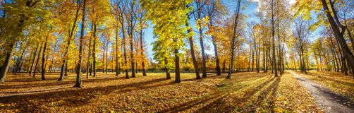 Parkland in Kadriorg-Park bij de gouden herfst Tallinn, Estland royalty-vrije stock foto