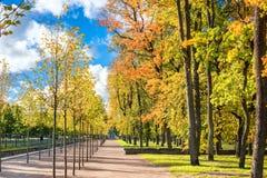 Parkland in Kadriorg-Park bij de gouden herfst Tallinn, Estland stock fotografie
