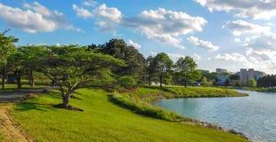 Parkland a lo largo del lago imagen de archivo libre de regalías