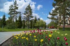Parklandschaft Stockfotografie