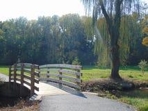 Parklandschaft Lizenzfreie Stockfotografie