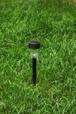 Parklaterne auf grünem Gras Stockbilder