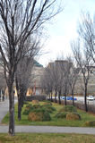 Parkmening in Winnipeg Royalty-vrije Stock Afbeeldingen
