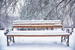 Parkowa ławka i drzewa zakrywający ciężkim śniegiem Obrazy Royalty Free