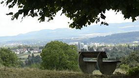 Parkowa ławka pod starym wapna drzewem zbiory wideo