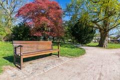 Parkowa ławka w idyllicznym parku w wiośnie obraz royalty free