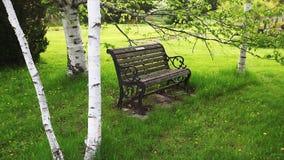 Parkowa ławka w pokojowym zielonym położeniu zbiory wideo