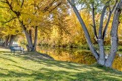 Parkowa ławka wzdłuż Boise rzeki w Idaho jesieni Zdjęcie Royalty Free