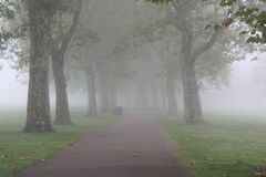 parkowa ścieżka Zdjęcia Stock