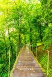 Parkowa ścieżka w Ljubljana kasztelu parku zdjęcia stock