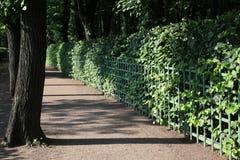 Parkowa aleja w lato ogródzie zdjęcie royalty free