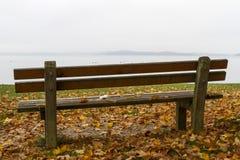 Parkowa ławka i drzewo na jeziornym Chiemsee, Niemcy Zdjęcia Stock
