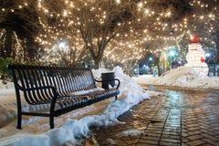 Parkowa ławka w zimie Obraz Royalty Free