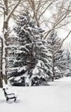 Parkowa ławka w zimie Zdjęcia Stock