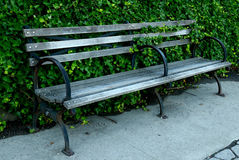 Parkowa ławka z bluszczy stojakami na chodniczku zdjęcia stock